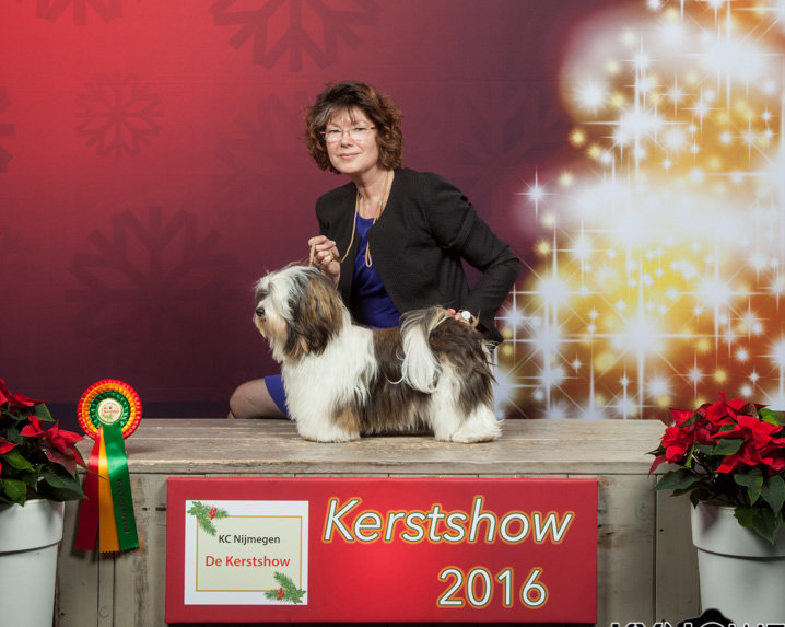 Happy kerstshow 2016